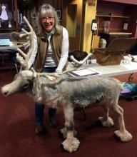 Sven the reindeer